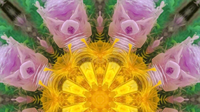 从一些五颜六色的羽毛的全景数字完成的形状 库存照片
