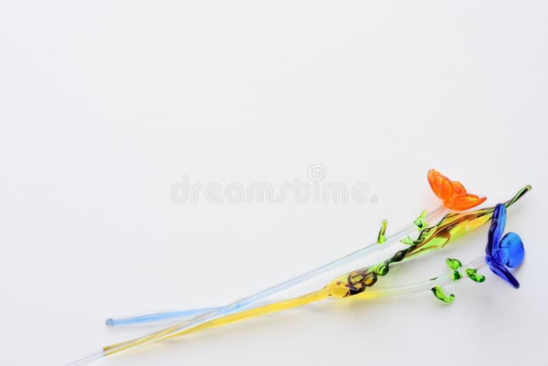 从一块玻璃的被隔绝的色的花在白色背景 库存图片