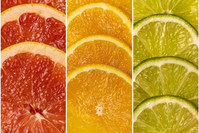 从一套的拼贴画柑橘新鲜水果 顶视图 免版税图库摄影