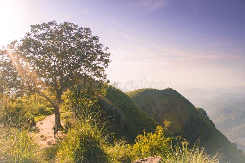 从一点亚当斯峰顶的不可思议的美丽的景色在斯里兰卡 背景新本质 与树的高山,天空蔚蓝 库存照片