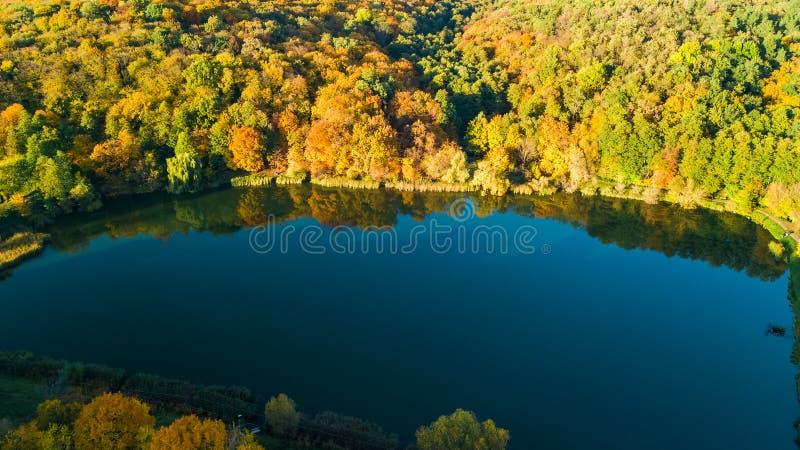 从上面金黄秋天背景、森林空中寄生虫视图有黄色树的和美好的湖风景,基辅 库存图片