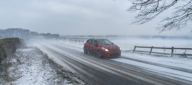 从东方暴风雪的野兽到达科茨沃尔德,英国 库存照片