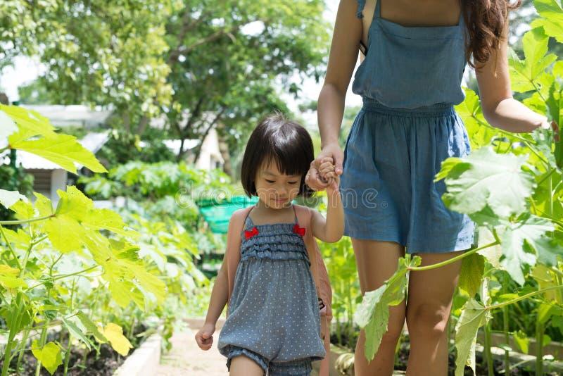 从事园艺与她的母亲的愉快的亚裔女儿 免版税库存照片