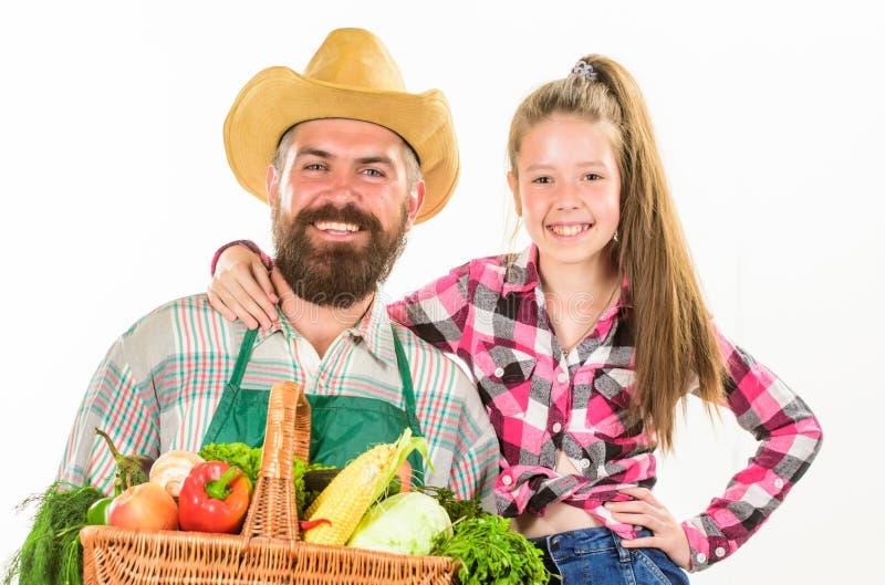 从事园艺和收获 家庭农厂有机菜 有孩子的人有胡子的土气农夫 父亲农夫或花匠 免版税库存照片