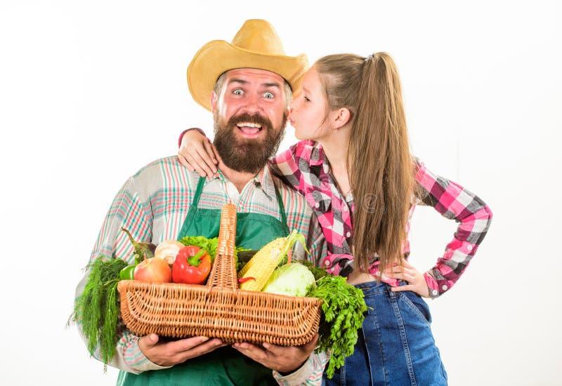 从事园艺和收获 家庭农厂有机菜 生农夫或花匠有女儿举行篮子收获的 图库摄影