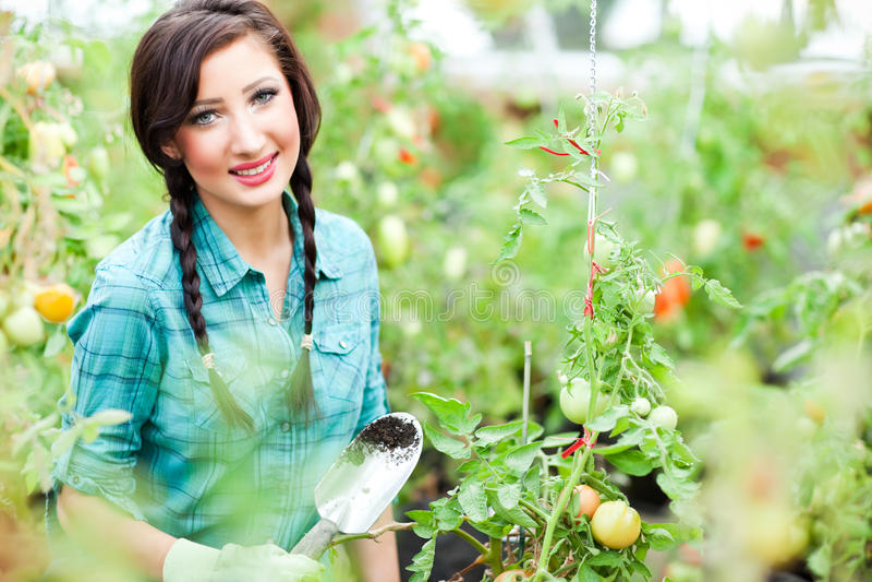 从事园艺的妇女 库存照片