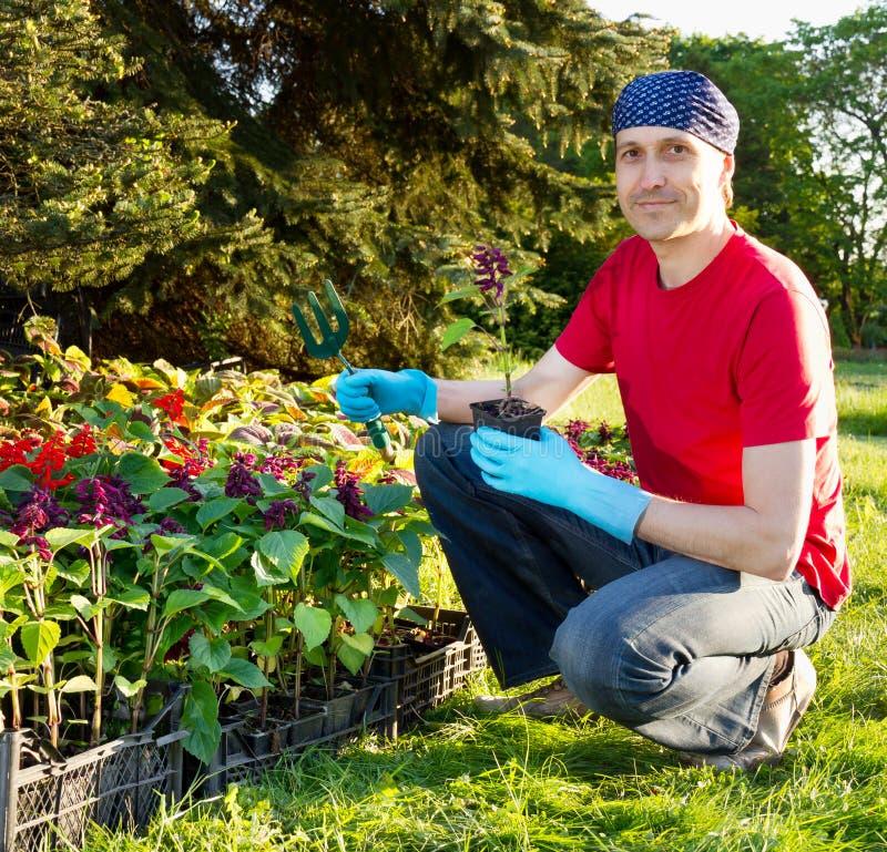 从事园艺的愉快的人微笑的年轻人 免版税库存图片