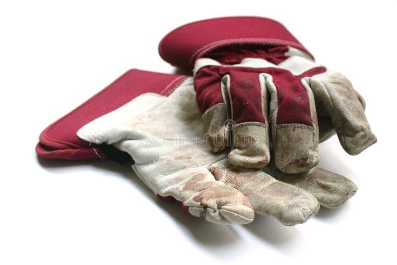 从事园艺的手套使用的工作 图库摄影