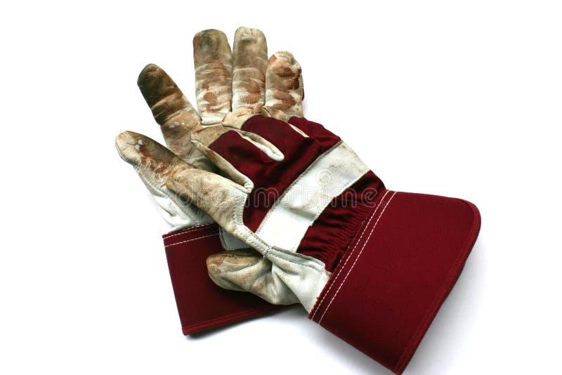 从事园艺的手套使用的工作 库存照片
