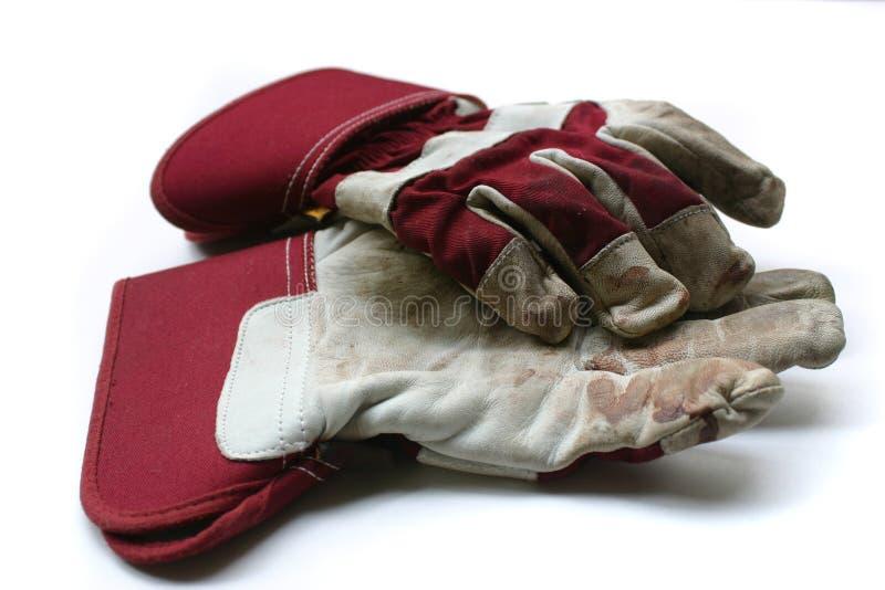 从事园艺的手套使用的工作 免版税库存照片