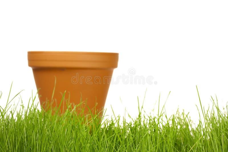 从事园艺的春天 库存图片