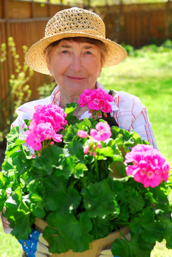 从事园艺的高级妇女 免版税库存照片