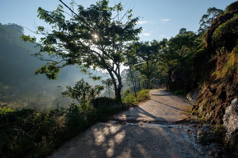 从亚当斯的人行道锐化在日出,斯里兰卡 免版税库存图片