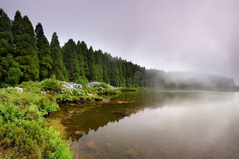 从亚速尔群岛盐水湖的全景风景 Canario盐水湖 免版税库存图片