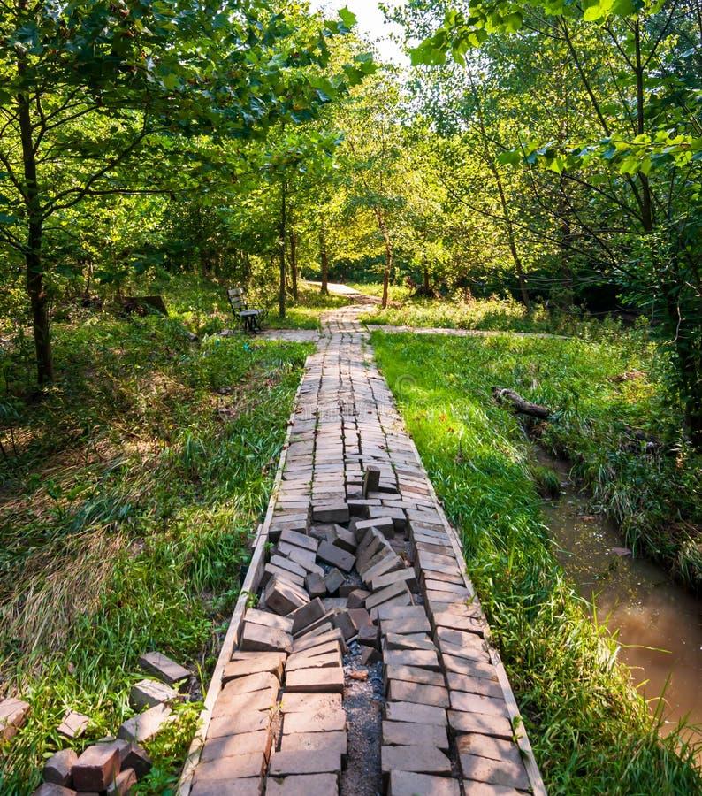 从从九英里的洪水被损坏了的砖走道在弗利克公园跑由于大雨,匹兹堡,宾夕法尼亚, 免版税图库摄影