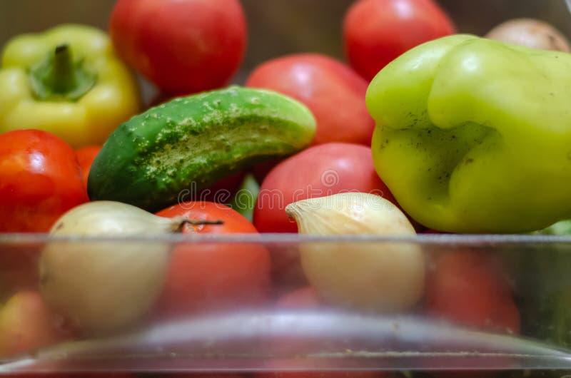 从他的庭院收集的未洗的新鲜蔬菜 观察水平射击 r 免版税库存照片