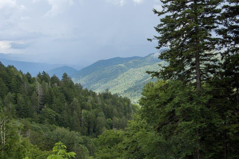 从伟大的Smokey山国立公园的场面 免版税库存照片