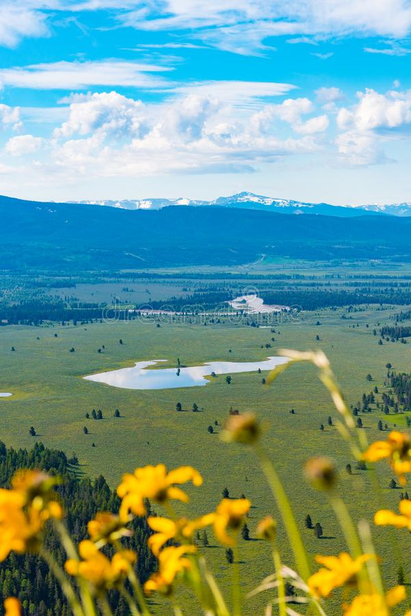 从信号山,大蒂顿国家公园的看法 免版税库存图片