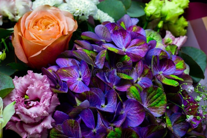 从八仙花属、牡丹玫瑰、菊花、南北美洲香草和德国锥脚形酒杯特写镜头装配的明亮的不同的花束 库存照片