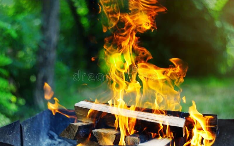 从切片木炭的美丽的明亮的黄色火焰在金属火盆烹调烤肉的火准备里面 库存图片