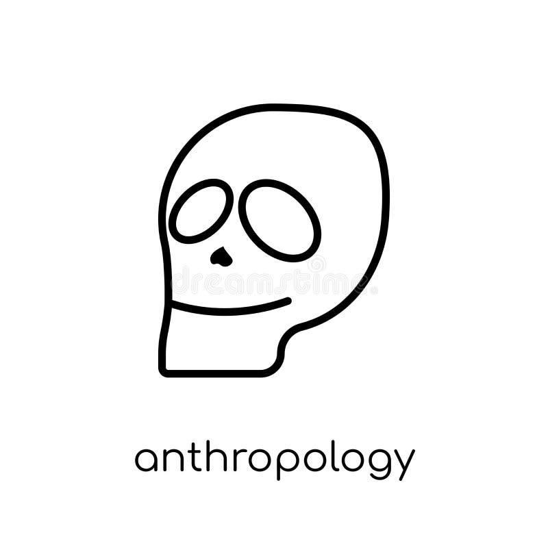 从博物馆汇集的人类学象 库存例证