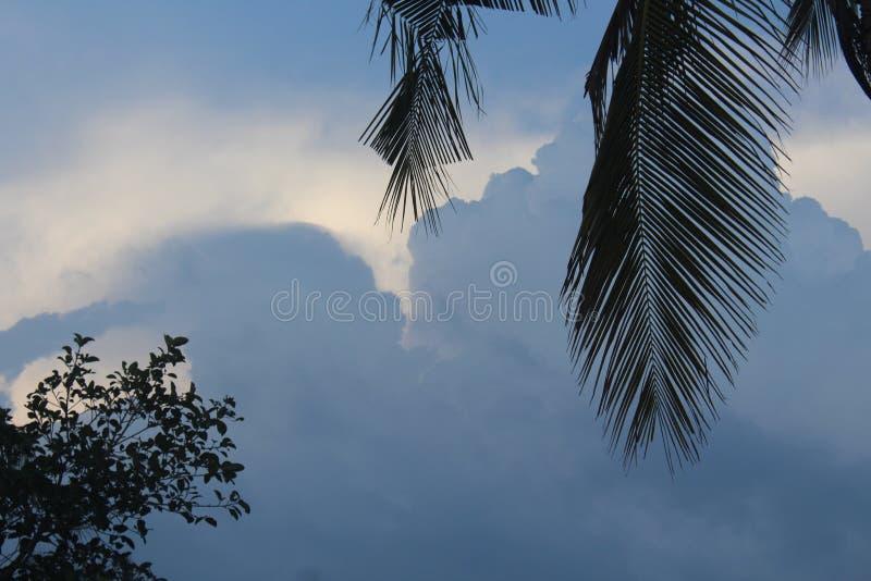 从卡纳塔克邦村庄的自然  免版税库存照片