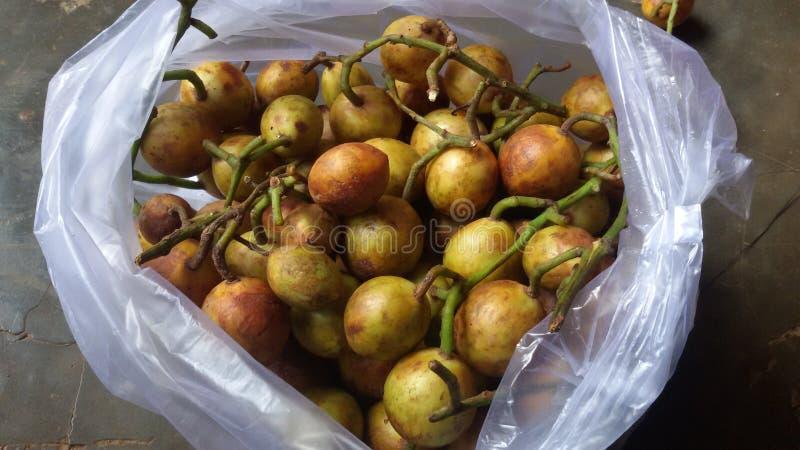 从印度尼西亚的果子 免版税库存照片
