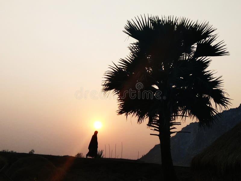 从印度村庄的日落图片 免版税库存照片