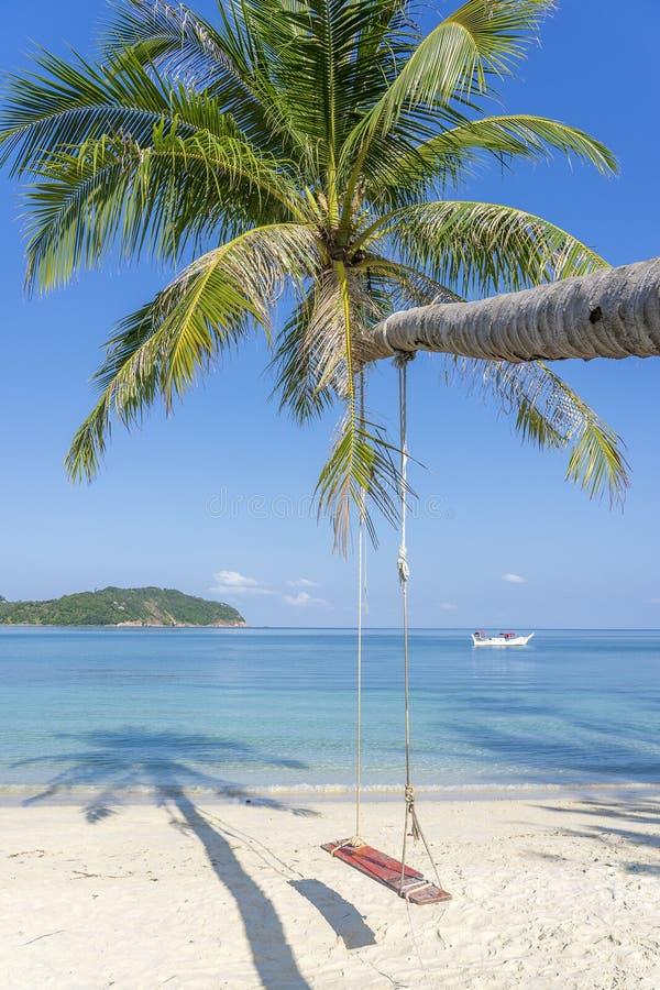 从可可椰子树的摇摆吊在蓝色海水附近的沙滩在泰国 夏天、旅行、假期和假日概念 图库摄影