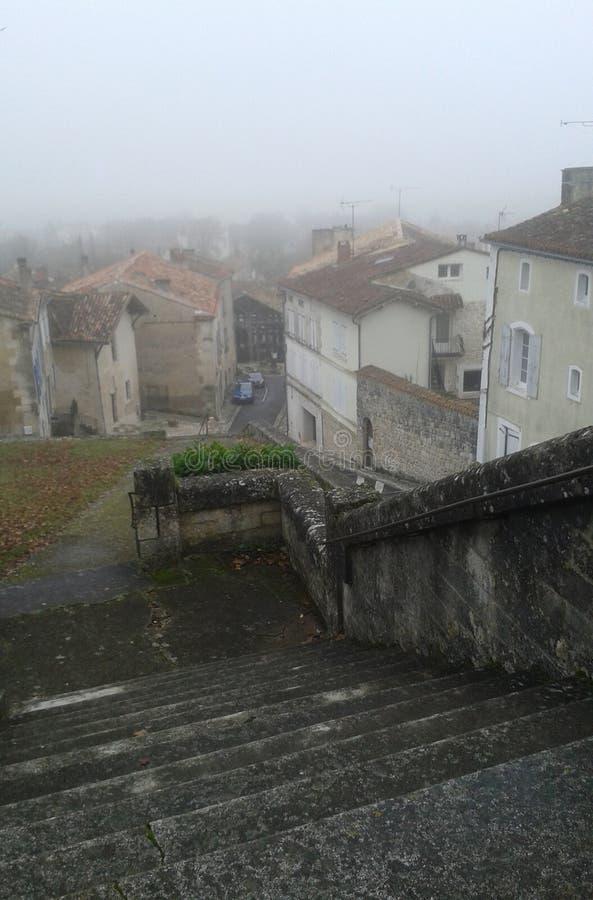 从台阶上面的维勒布瓦拉瓦莱特视图有下面房子的 向量例证