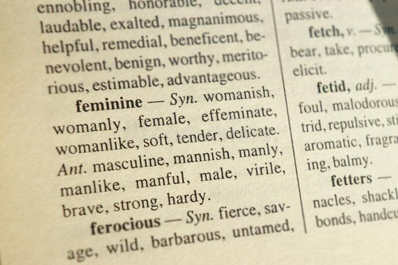 从同义词和反义词字典的词条'女性'的词的 集中的被弄脏的背景于词 库存照片