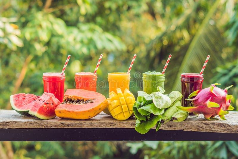 从圆滑的人的彩虹 西瓜、番木瓜、芒果、菠菜和龙结果实 圆滑的人,汁液,饮料,喝 库存图片