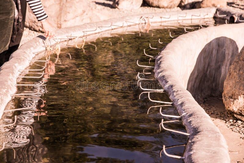 从地下的热水在Sankamphaeng温泉 图库摄影