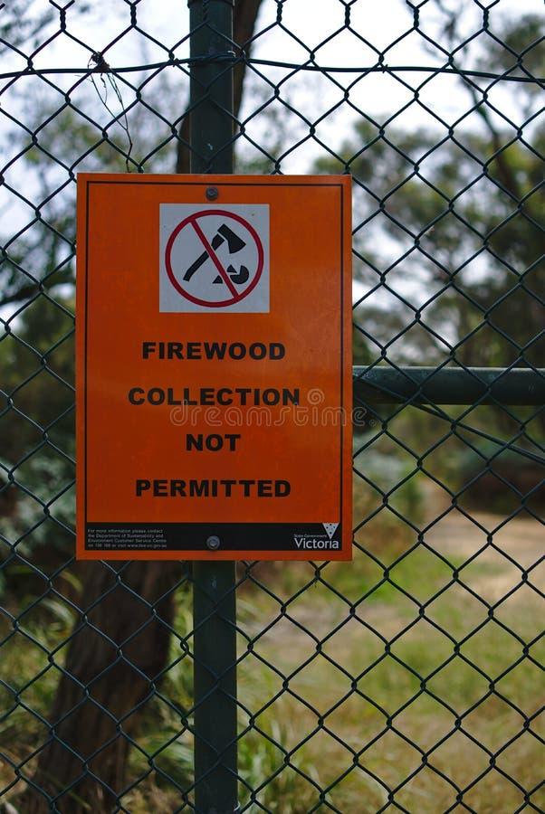从地方理事会的没有木柴汇集 免版税库存图片