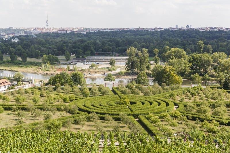 从城市布拉格的植物园的一个看法 图库摄影