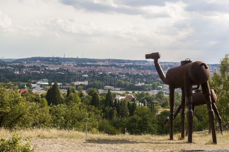 从城市布拉格的植物园的一个看法 免版税库存照片