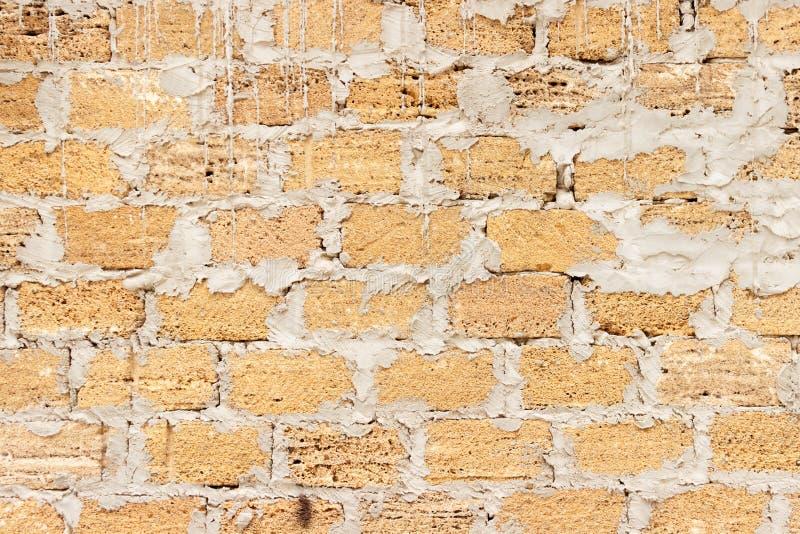 从壳的砖构造背景,墙壁由壳砖制成 库存图片