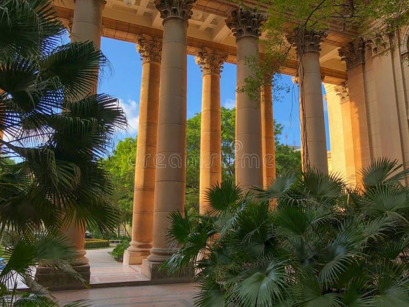 从大学的庭院的看法柱廊的 库存图片