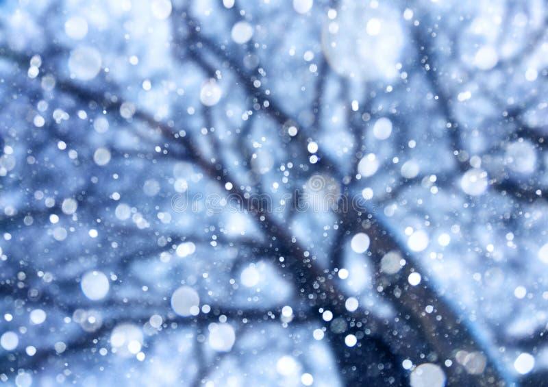 从天空的落的雪在树下 免版税库存照片