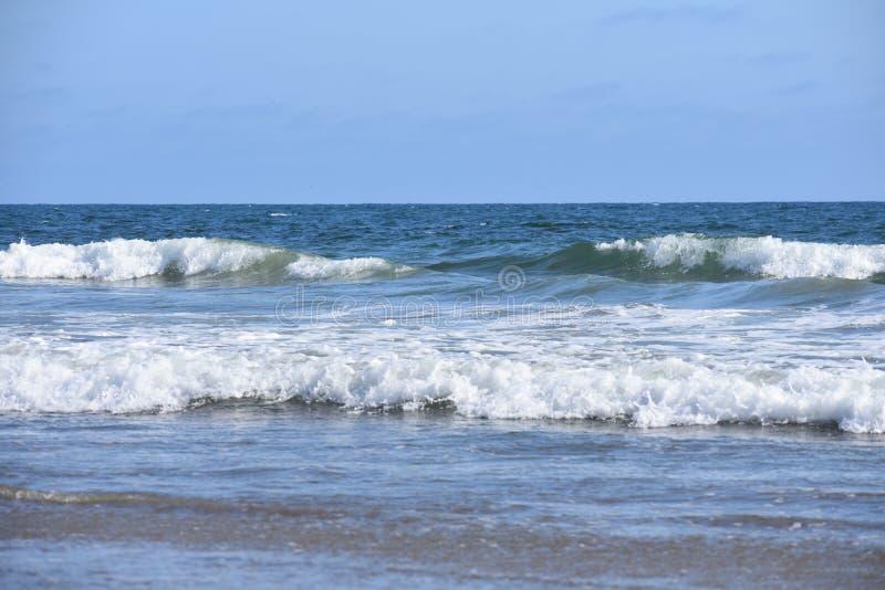 从太平洋的修造的波浪沿南加州海岸, 10 图库摄影