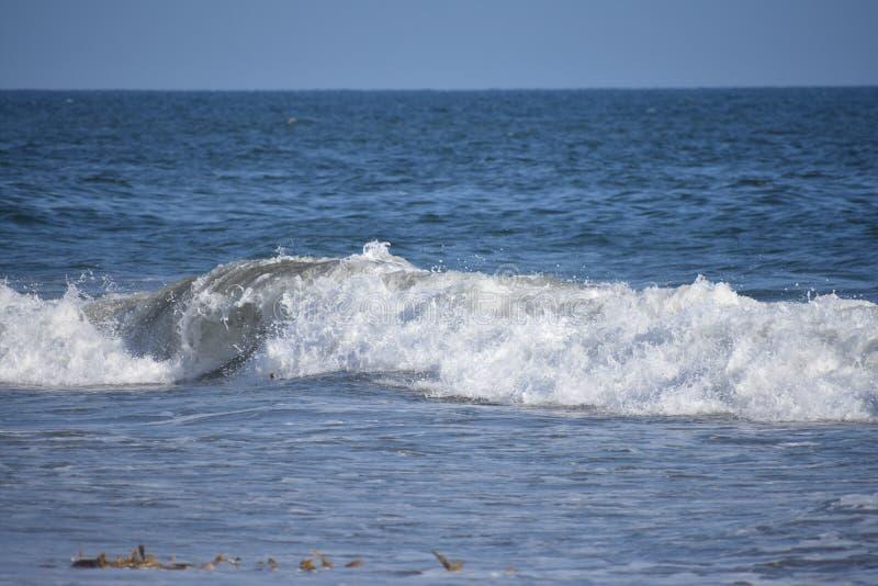从太平洋的修造的波浪沿南加州海岸, 11 免版税库存照片