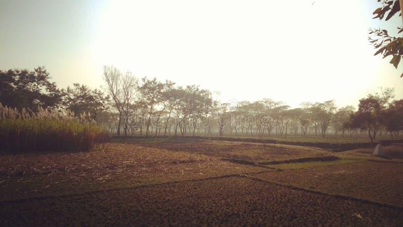 从孟加拉国的印地安人视域 库存图片