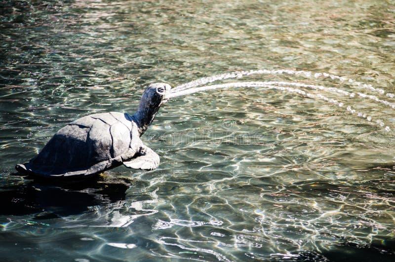 从它的嘴的乌龟设计喷泉喷出的水 库存照片