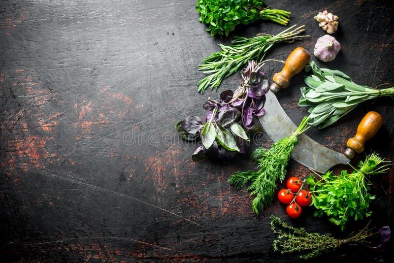 从家庭菜园的新鲜的草本与刀子、蕃茄和大蒜 库存照片
