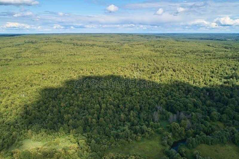从寄生虫的航拍 与绿色森林的风景 库存图片