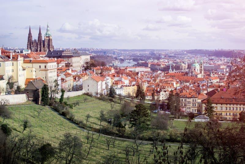 从小山的布拉格市全景 免版税库存照片