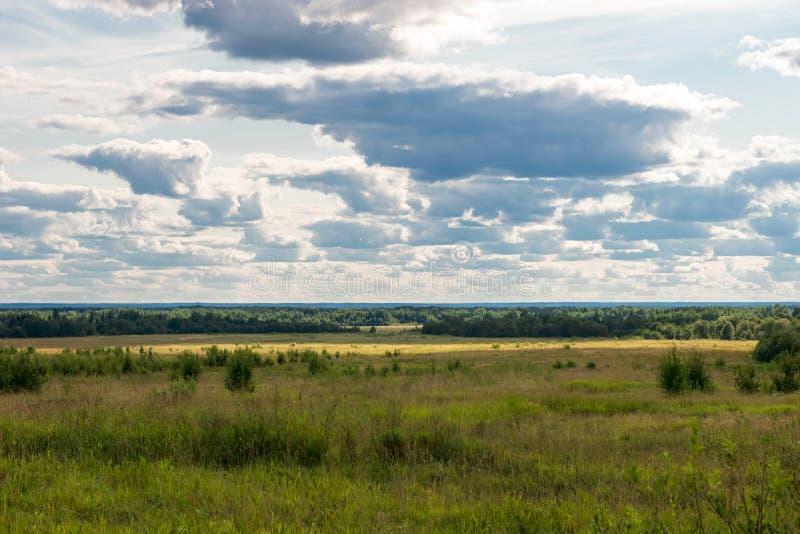 从小山的顶端看法在领域和森林 免版税图库摄影