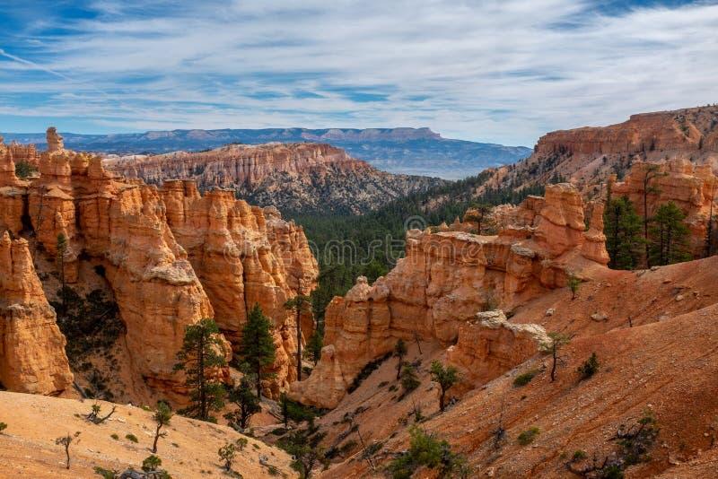 从峡谷地板采取的所有它的荣耀的惊人的布赖斯峡谷,与桔子各种各样的树荫的令人惊讶的石灰石不祥之物  免版税库存图片
