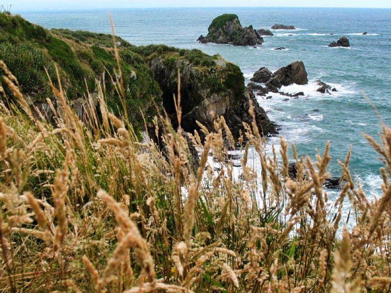 从峭壁的看法在海角肮脏的风 免版税图库摄影