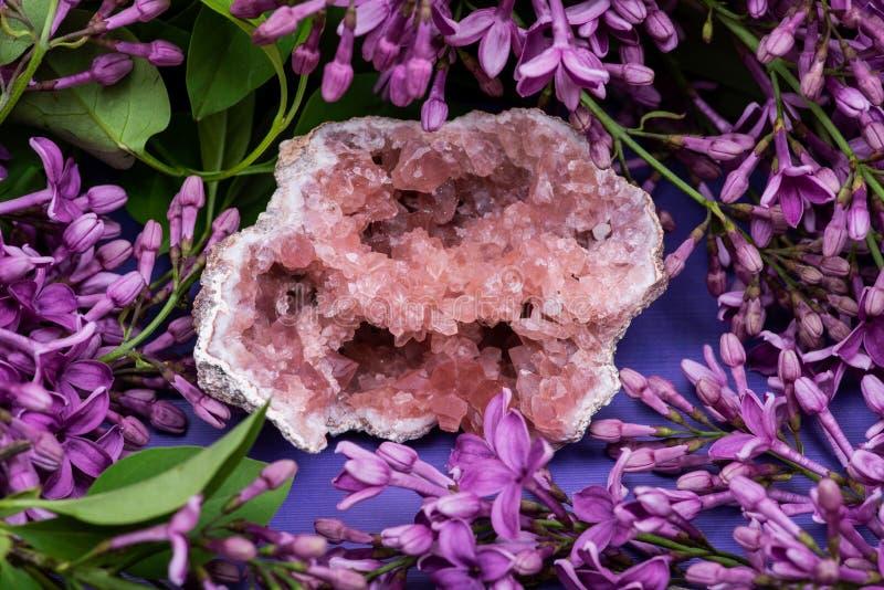 从巴塔哥尼亚,阿根廷的罕见的桃红色紫色的Geode群 围拢由紫色淡紫色花 免版税库存照片